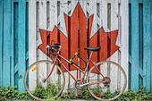 移民加拿大不再是夢,加拿大技術移民&評分項目全揭露!