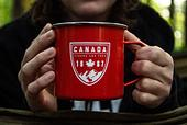 StudyDIY |【加拿大遊學打工】Co-op有薪實習:申請流程+熱門學校推薦 | 重點摘要一把罩!